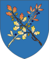 Coat of Arms of Dziaržynsk, Belarus.png
