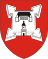 Coat of Arms of Lachavičy, Belarus.png