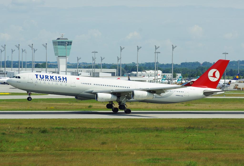 unique hoodia reviews turkish airlines
