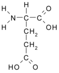 Acide glutamique