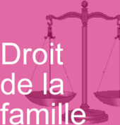 PaletteDroitFamille.png