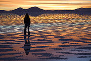 http://fr.academic.ru/pictures/frwiki/49/180px-Watching_Sunset_Salar_de_Uyuni_Bolivia_Luca_Galuzzi_2006.jpg