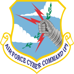 Air Force Cyber Command (Provisional).png