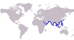 Alepes melanoptera distribution.PNG