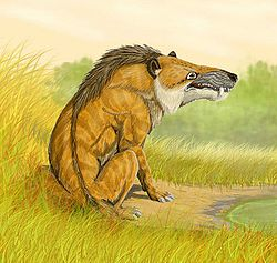 Dessin d'Andrewsarchus mongoliensis