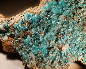 Aurichalcite - Mine d'Escouloubre,  Aude, France (XX 6 mm)
