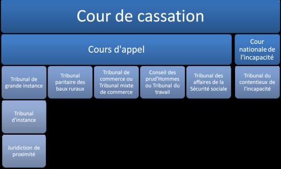 Схема гражданской юрисдикции Франции.  Хотя Кассационный суд обладает исключительной компетенцией и...