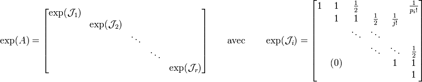 \exp(A)= \begin{bmatrix}      \exp(\mathcal{J}_1) &                         &        &        &                         \\                             & \exp(\mathcal{J}_2) &        &        &                         \\                             &                         & \ddots &        &               \\                             &                         &        & \ddots &               \\                             &                         &        &        & \exp(\mathcal{J}_r) \\ \end{bmatrix} \qquad \mbox{avec} \qquad \exp(\mathcal{J}_i)= \begin{bmatrix}       1 & 1 &  \frac{1}{2} &  &  &  \frac{1}{p_i!}\\      & 1 & 1 & \frac{1}{2} & \frac{1}{j!} &  \\      &  & \ddots & \ddots &  &  \\      &  &  & \ddots & \ddots & \frac{1}{2} \\      & (0) &  &  & 1 & 1 \\      &  &  &  &  & 1 \\ \end{bmatrix}
