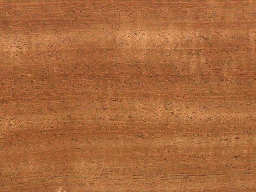 Couleur Bois Acajou : Mahogany Wood Durability