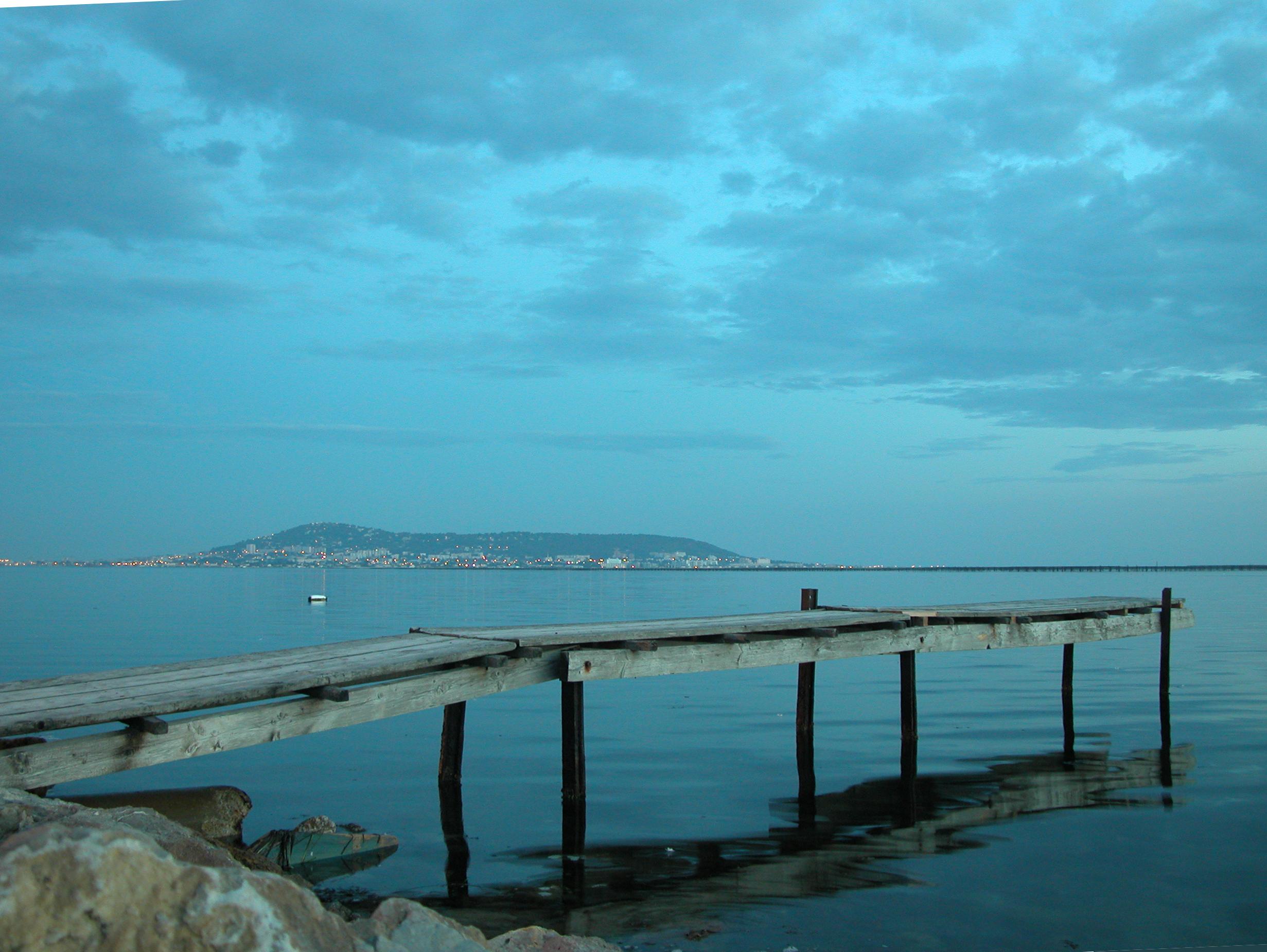 Bassin de thau for Bassin etang