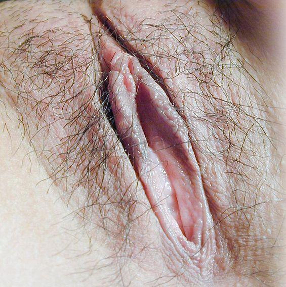 sexe artistique sex en francais