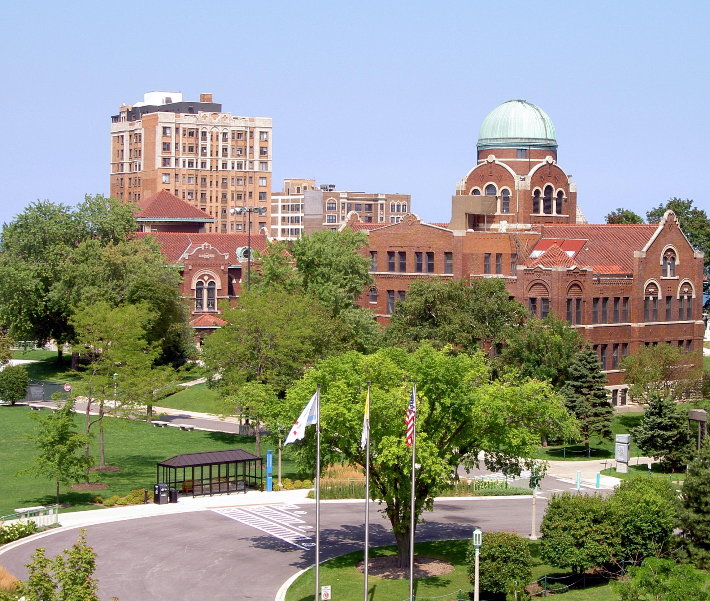 Loyola university chicago essay question