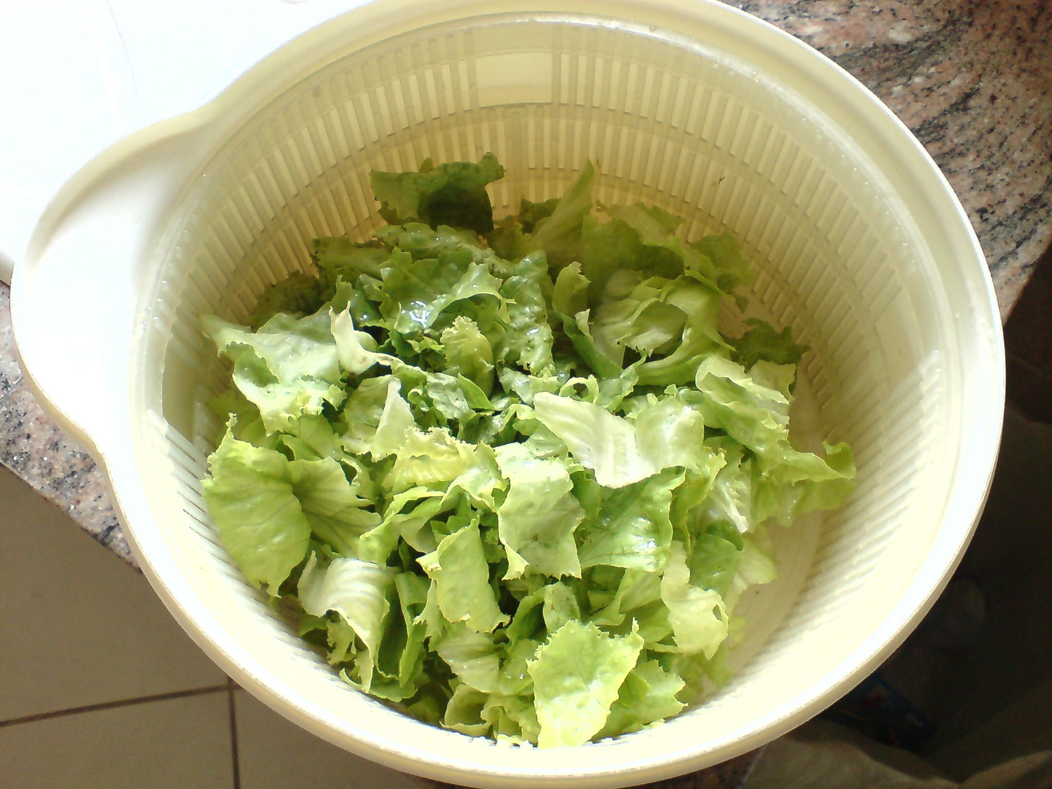 Essoreuse salade for Vers de salade
