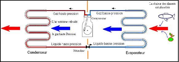 Chlorofluorocarbone - Fonctionnement d un refrigerateur ...