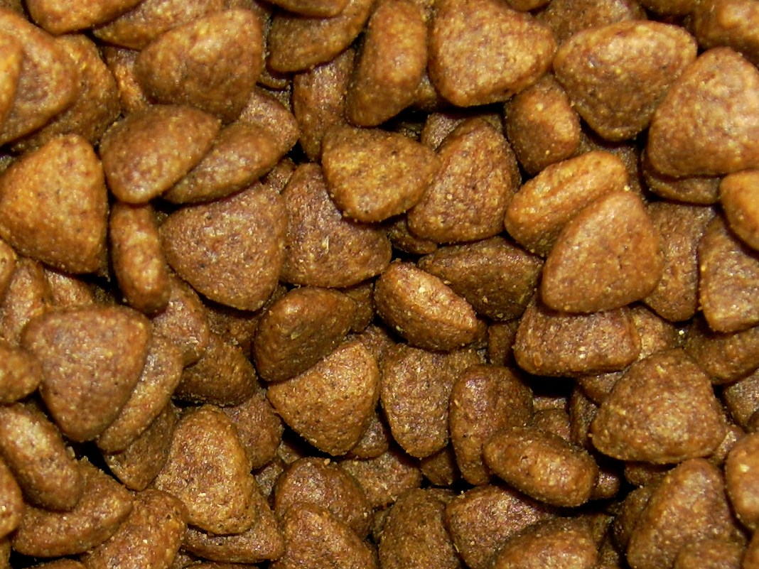 Australian Homemade Dog Food Recipes