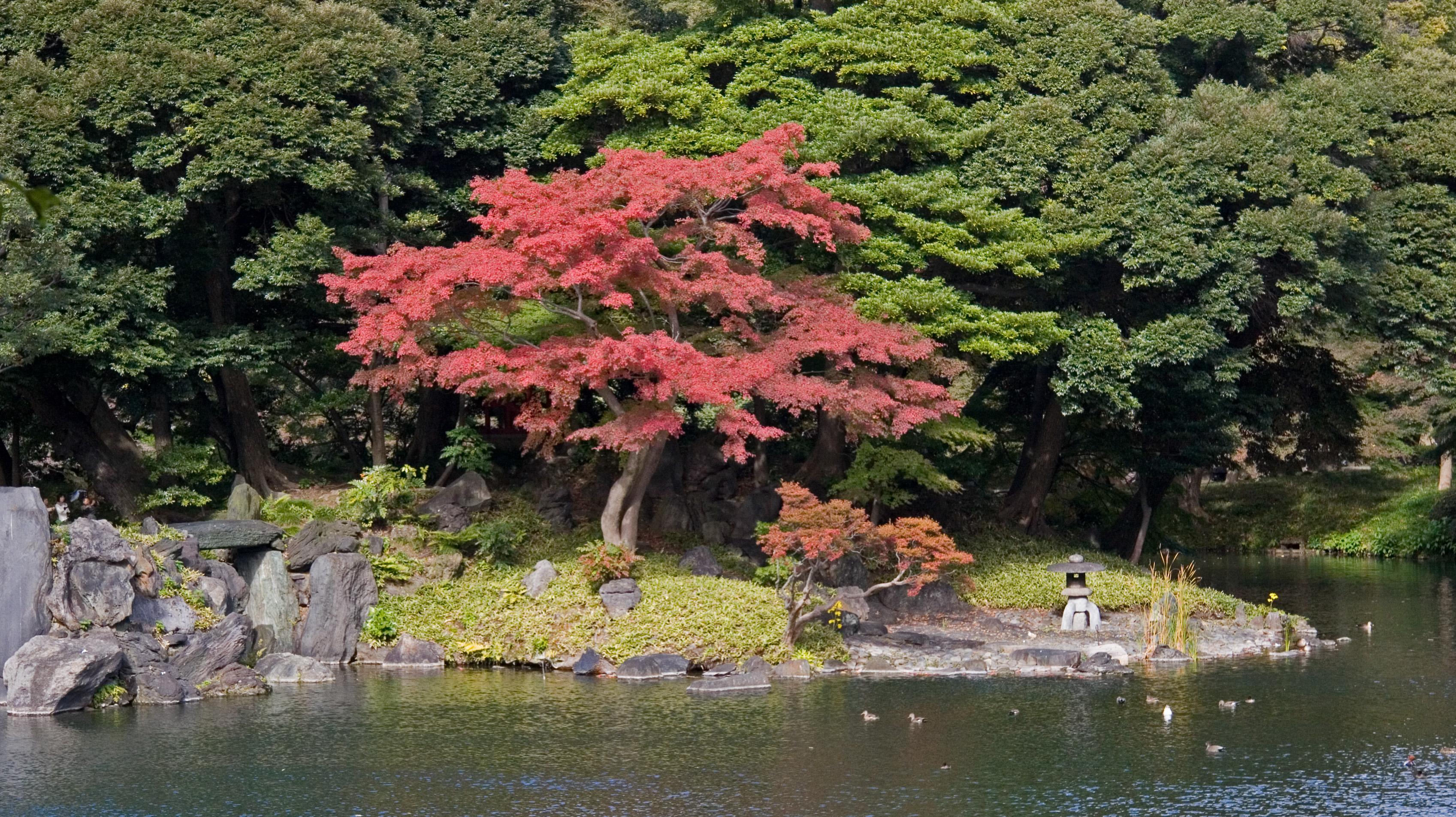 Koishikawa k raku en for Jardin korakuen