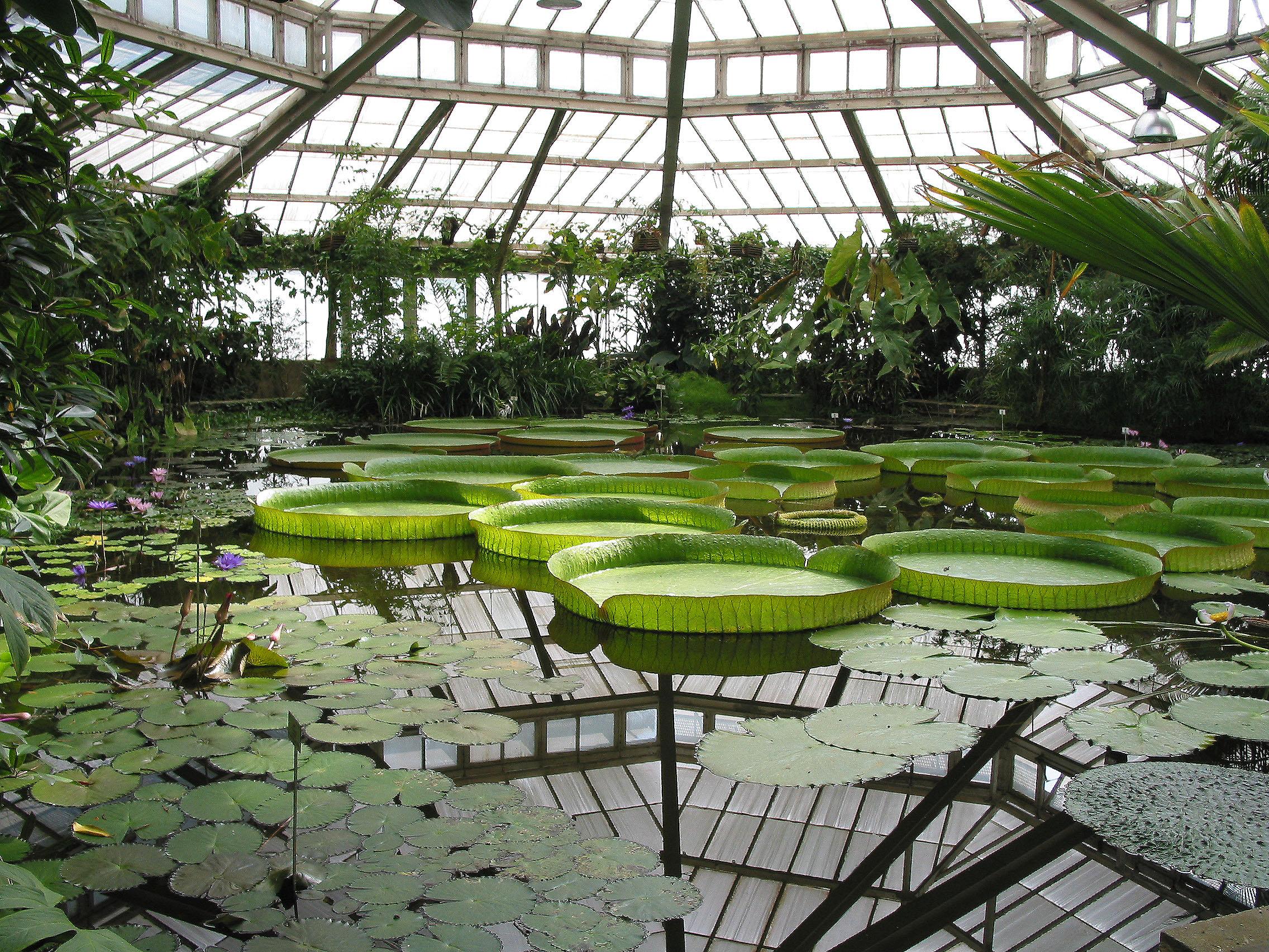 Jardin botanique national de belgique for Jardin belgique