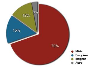 Groupes ethniques en pourcentages américains