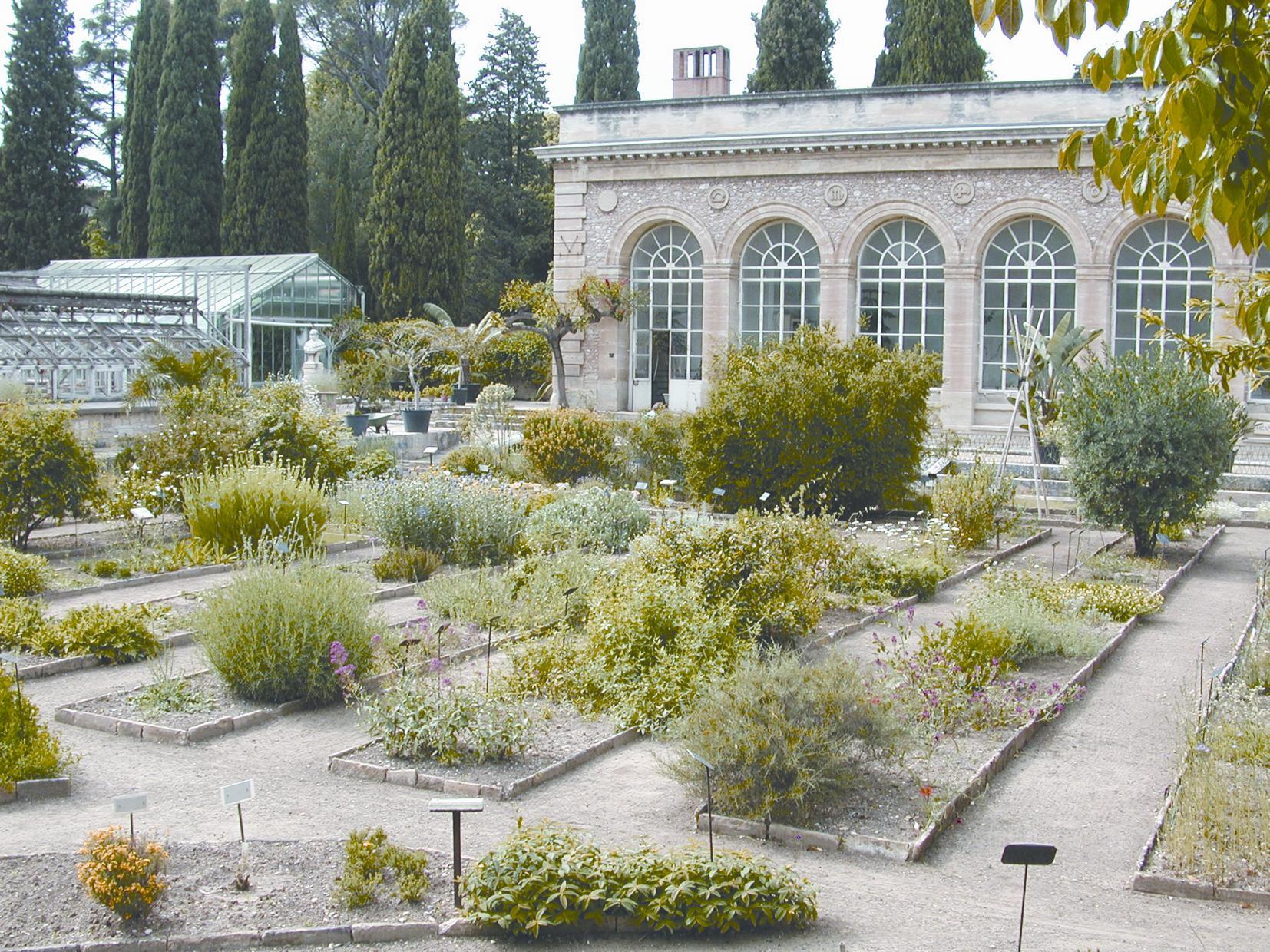 Jardin botanique for Jardin les plantes