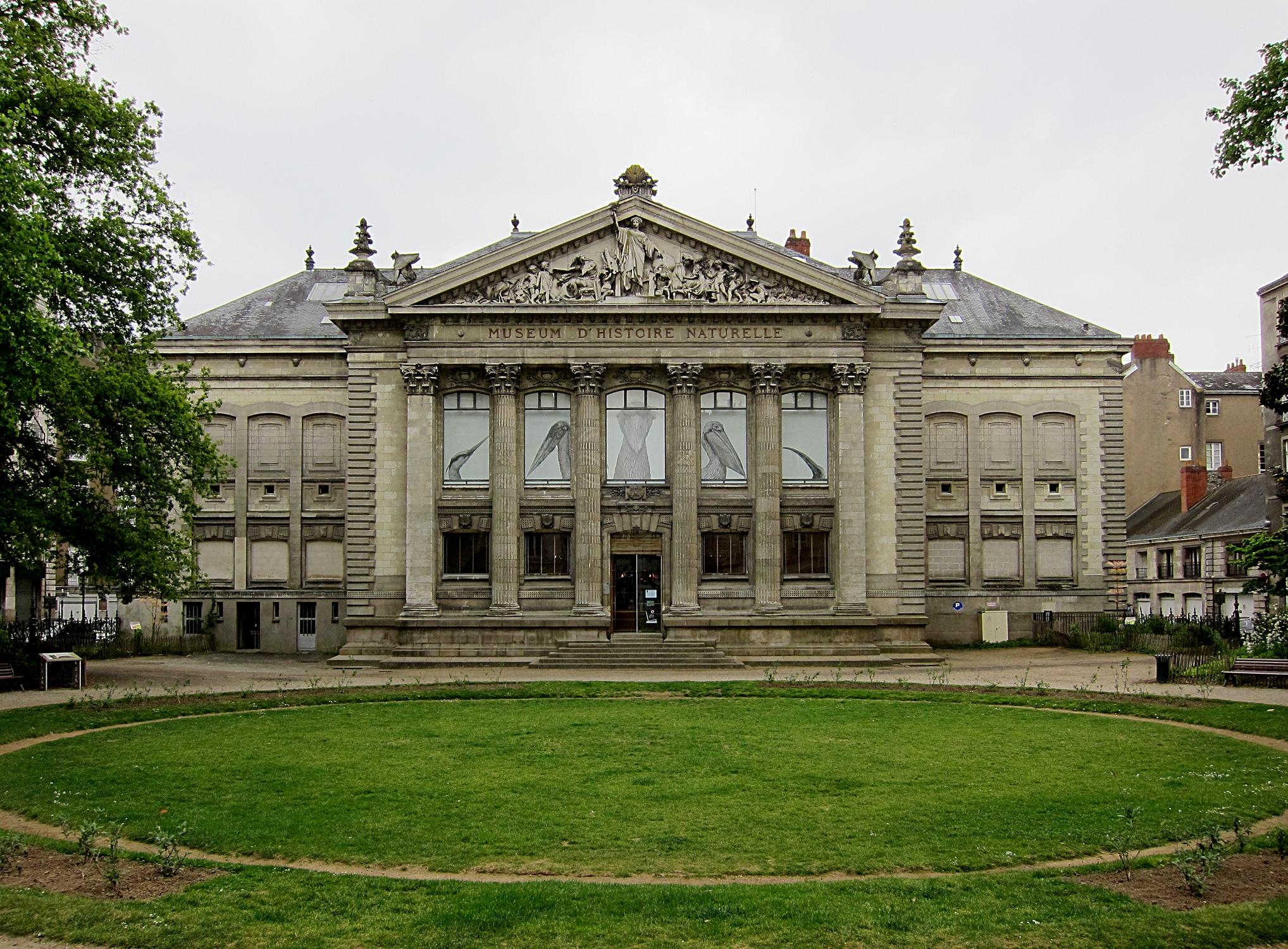 Dmuseum Of Natural History Nantes