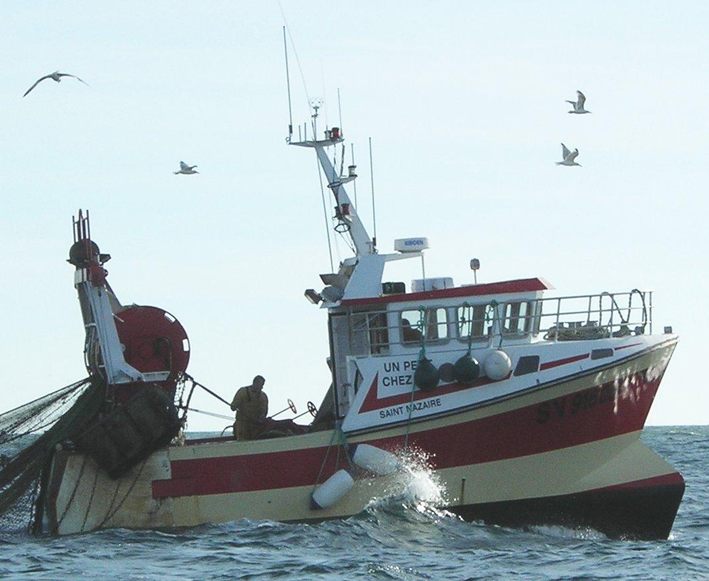 La pêche dhiver dans une nouvelle année