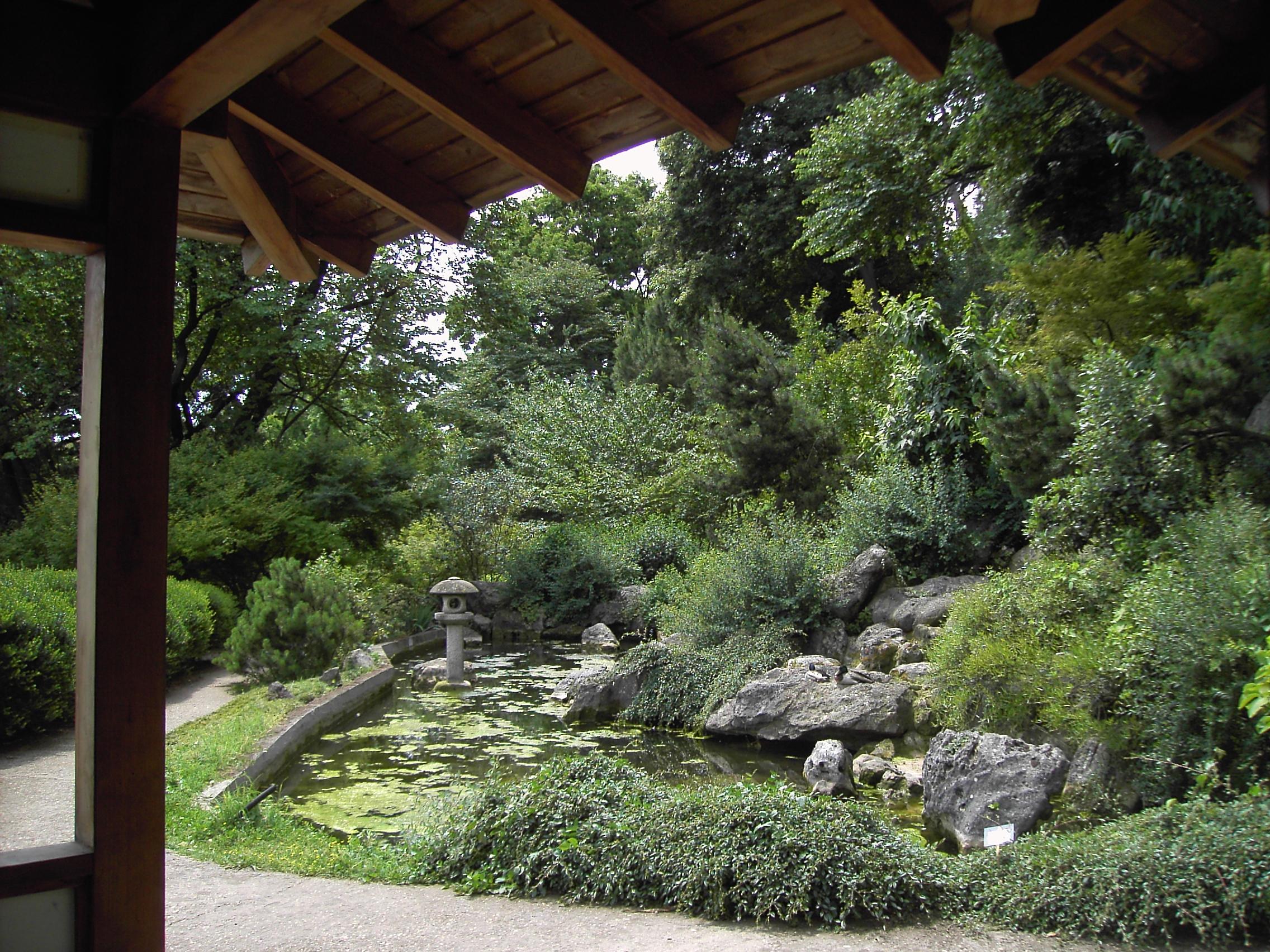 Jardin botanique de rome for Le jardin 489 rome