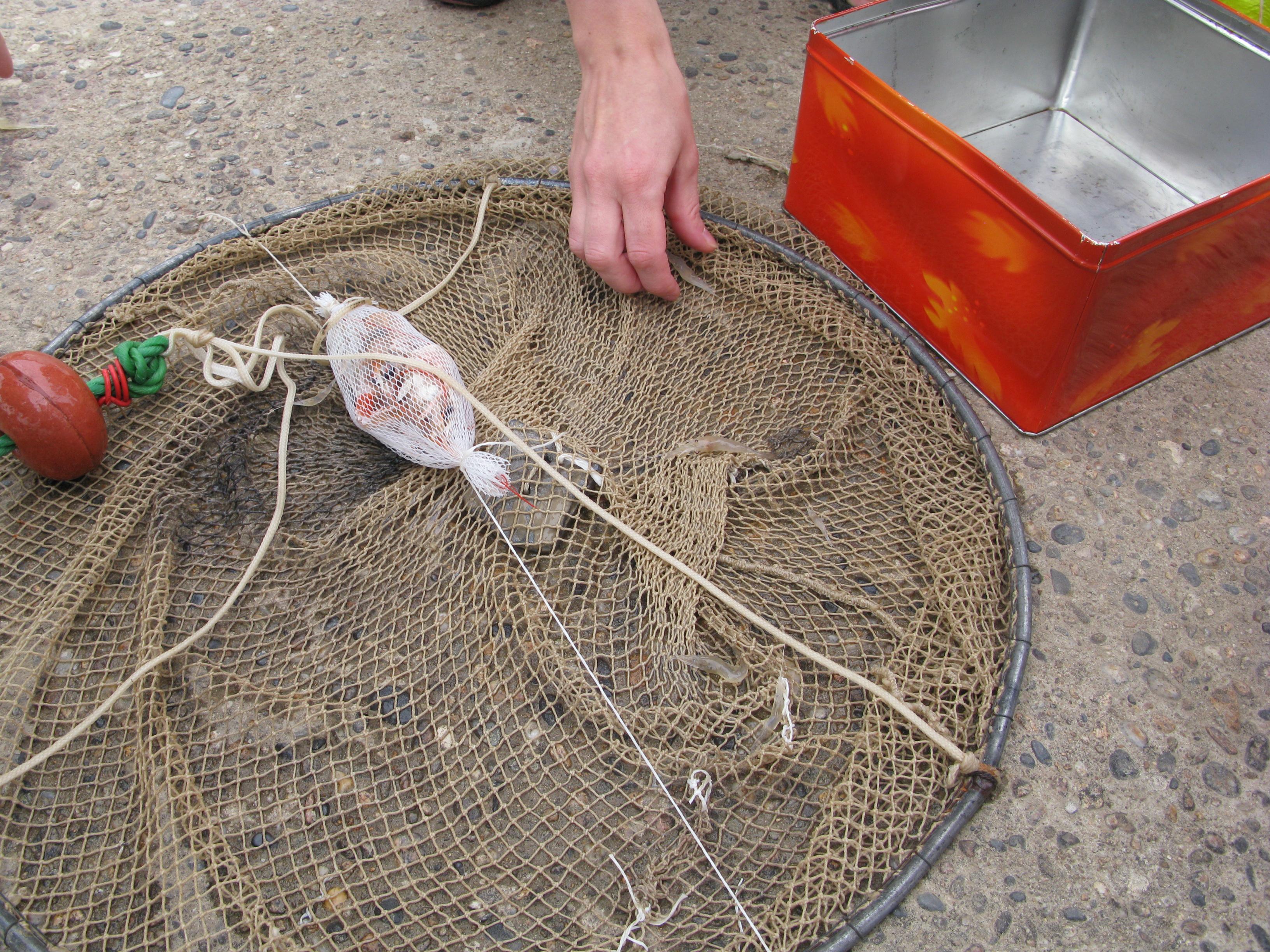 La base du repos et la pêche spb