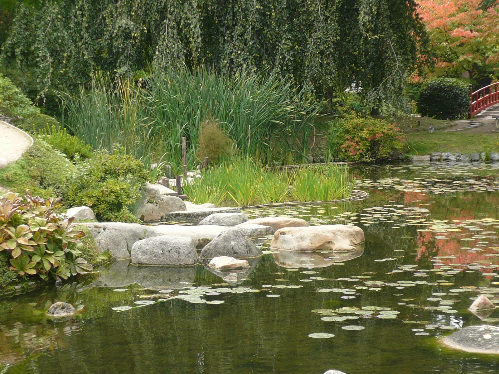 Musee departemental albert kahn for Amenagement jardin anglais