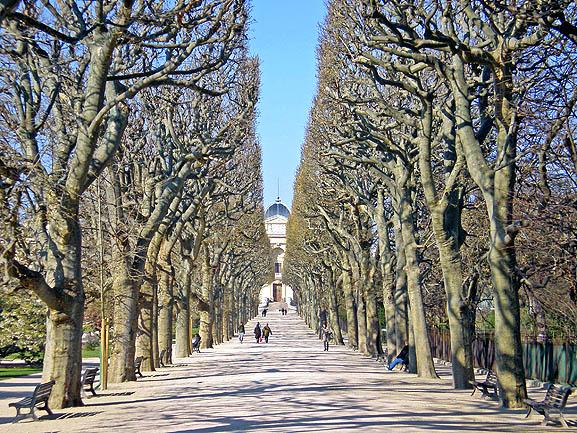 Jardin des plantes de paris - Le jardin des plantes paris ...