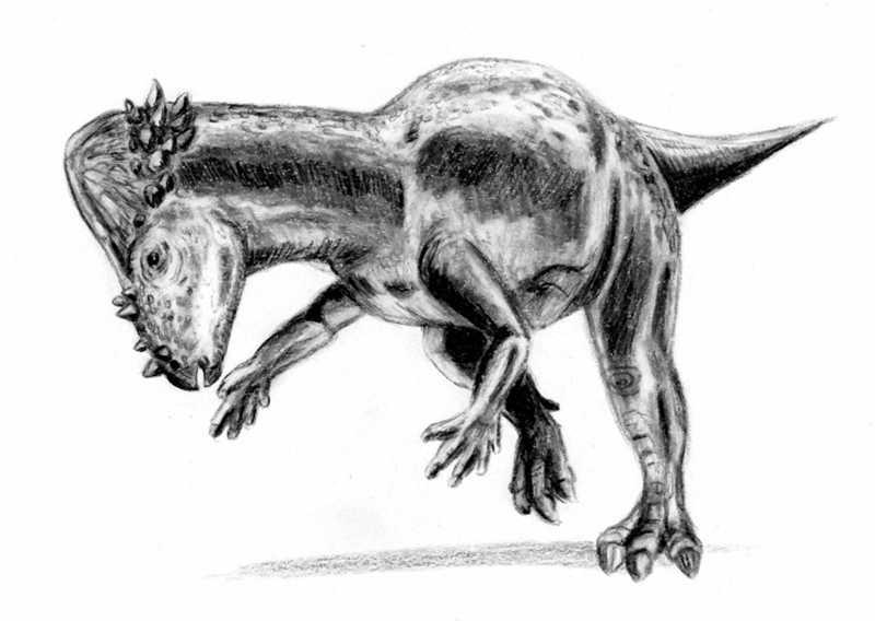Liste des dinosaures et autres animaux de la pr histoire - Liste dinosaures ...