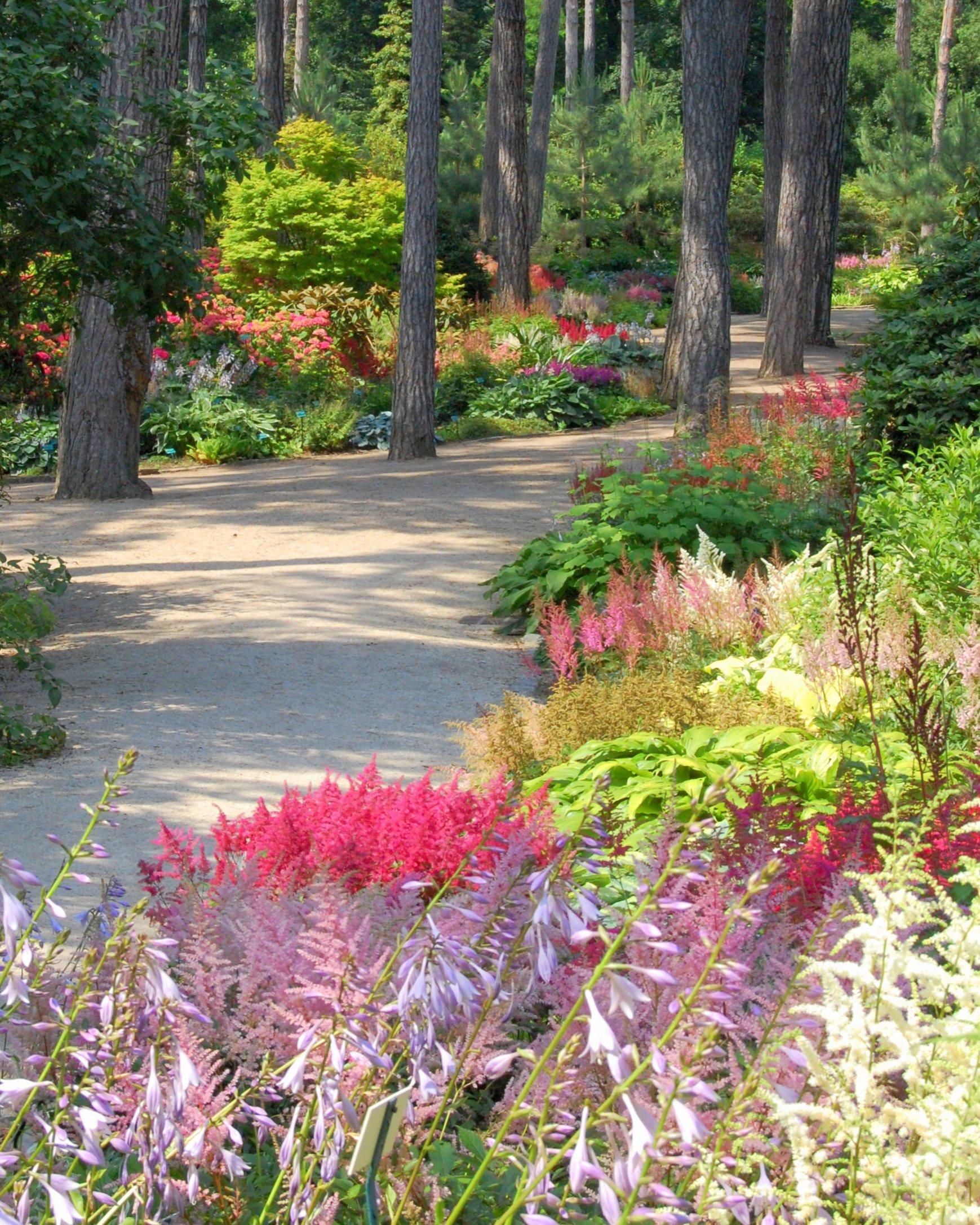 Parc floral de paris for Jardin botanique paris