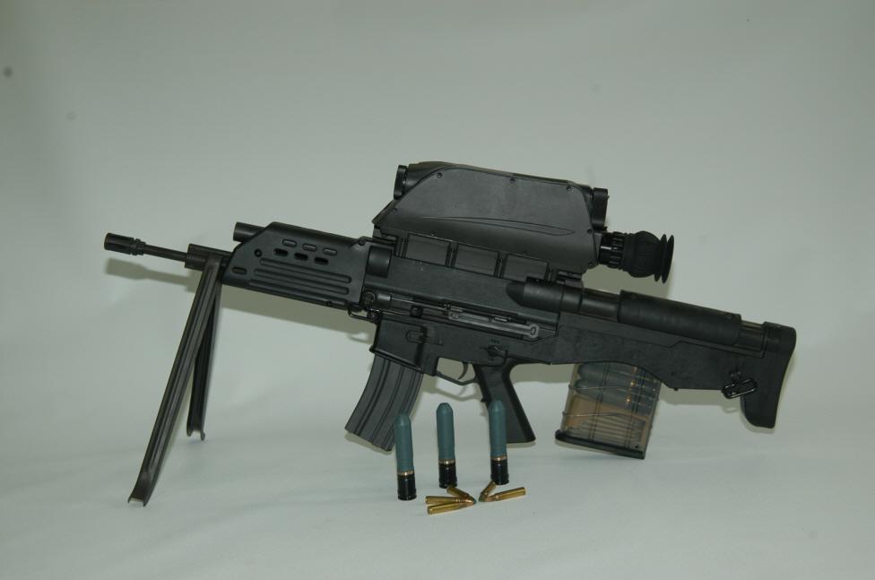 fusiles de asalto 2010