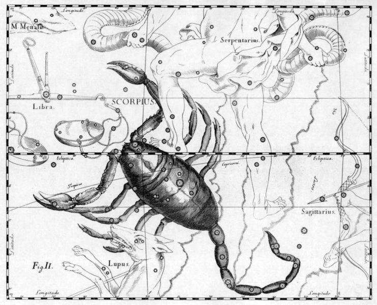 Из знаков Зодиака - Скорпион Особо буен, энергичен и силён.