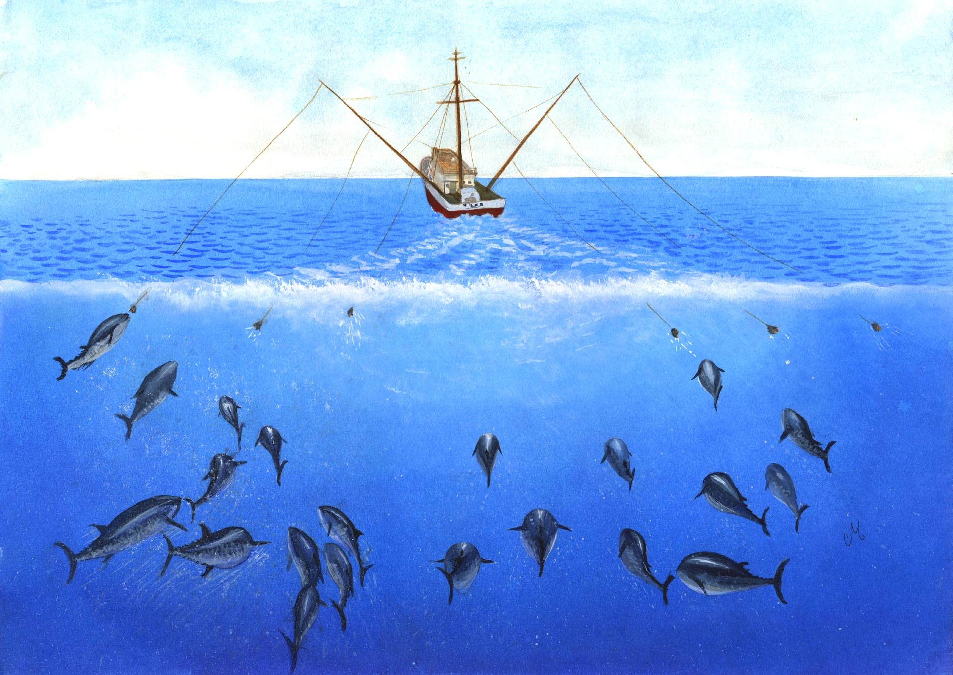 Les cartes pour la pêche le domaine de Vologda