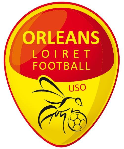 Union sportive orl ans loiret football for Loiret orleans